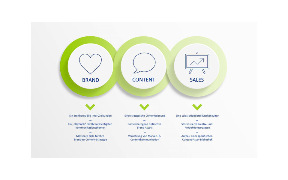 ClientLink-Leistung-Strategieberatung-BCS-Modell-Grafik
